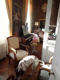 Sitting room with dog